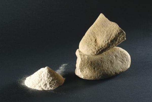 Expo: in Toscana scoperta la più antica farina al mondo